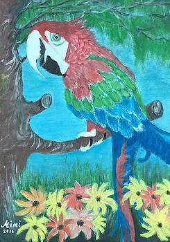 Jacko the parrot  by Mimi Eskenazi