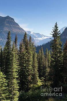 Jackson Glacier in Glacier National Park by Brandon Alms