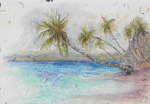 Jamaica Greater Antilles Private cove by Phyllis OShields