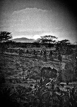 Jamaica in Black and White by Barbara Dudley