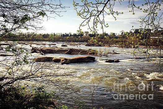 James River, Richmond VA by Joan McCool