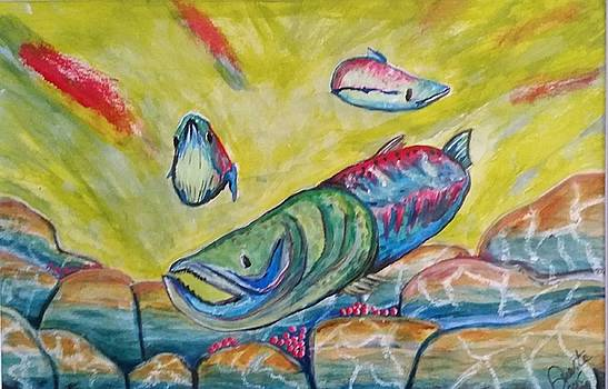 Jammin Salmon  by Carol Duarte