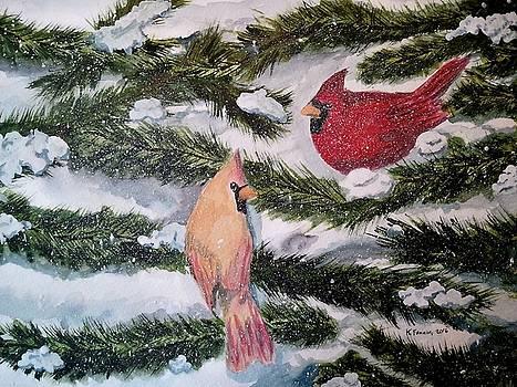 January Snow by B Kathleen Fannin