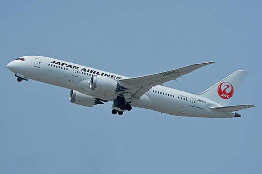Japan Airlines Boeing 787-8 JA835J Los Angeles International Airport May 3 2016 by Brian Lockett