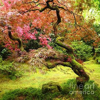 Japanese Garden by Anita Adams