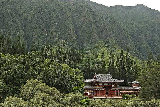 Michael Peychich - Japanese Temple
