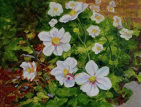 Japanese Windflowers by Dai Wynn