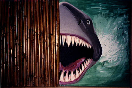 Jaws with Teeth by Paul Knotter