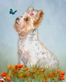 Jazzy and Miss Butterfly by Mary Timman