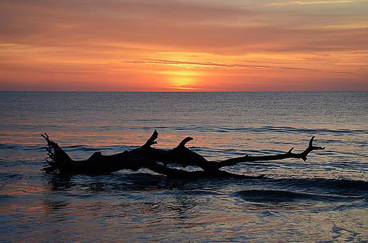 Jekyll Island Sunrise 2016D by Bruce Gourley