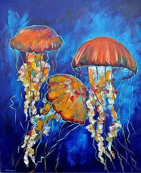 Jelly Fish by Lee Walker