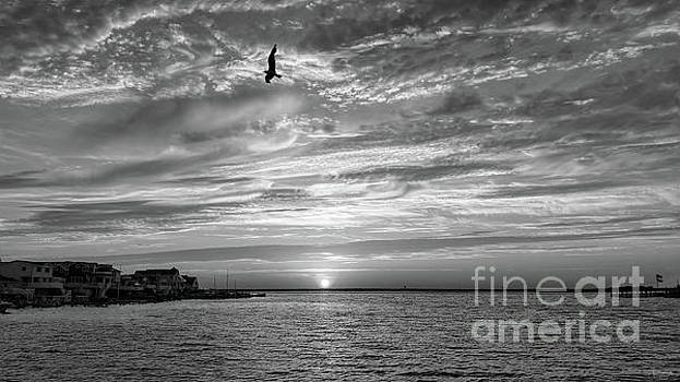 Jersey Shore Sunset In Black and White by Jeff Breiman