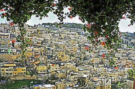 Jerusalem 2 by Lydia Holly