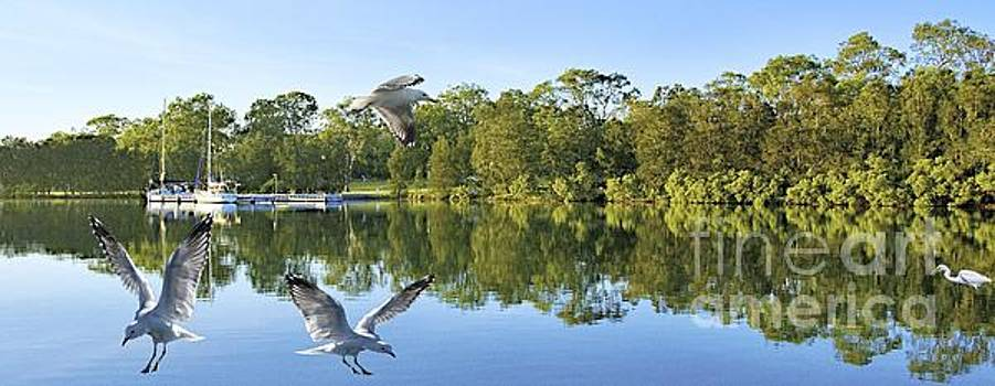 Jetty with Water Reflections Seagulls. Original Landscape Photo. by Geoff Childs