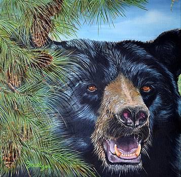 Joe Tahoe by Sherry Cullison