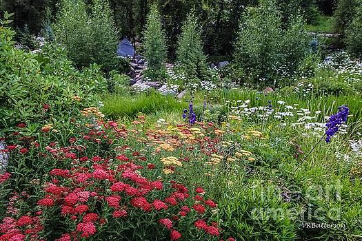 John Denver Sanctuary Flowers Three by Veronica Batterson