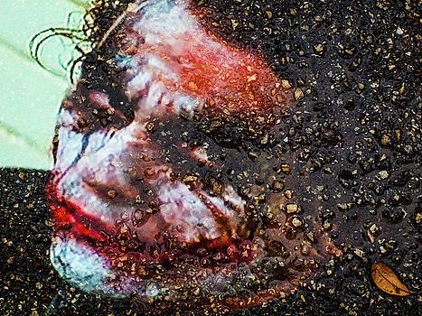 Joker by Randy Sylvia