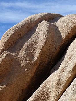 Jeff Brunton - Joshua Tree National Park 02