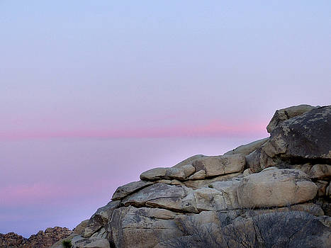 Jeff Brunton - Joshua Tree National Park 65