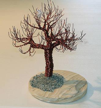 Joshua Tree with Blossom by Sal Villano