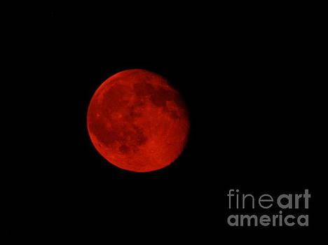 July Moon by J L Zarek