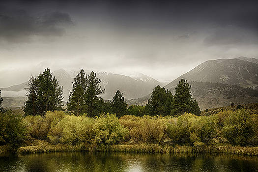 June Lakes Loop in the Autumn Rain by Janis Knight