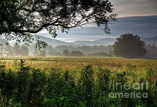 June Morning Cades Cove II by Douglas Stucky