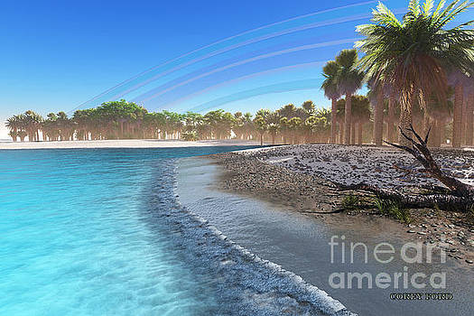Corey Ford - Jungle Beach