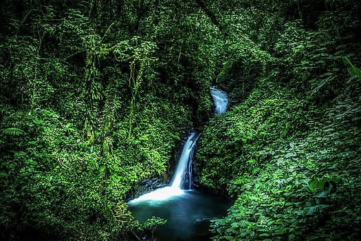 Jungle Waterfall by Nicklas Gustafsson