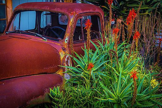 Junkyard Truck by Garry Gay