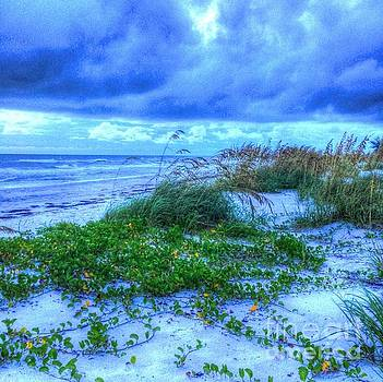 Just Beachy by Debbi Granruth
