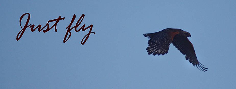 Just fly by Dan McCafferty