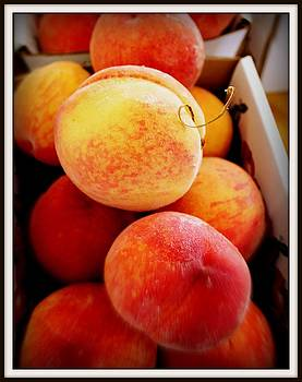Just Peachy by Donald Hill