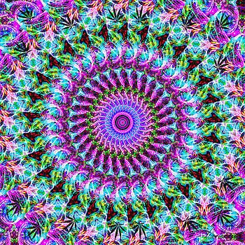 Diana Haronis - Kaleidoscope