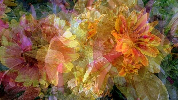 Kaleidoscope Flowers Collage by Kathy Barney