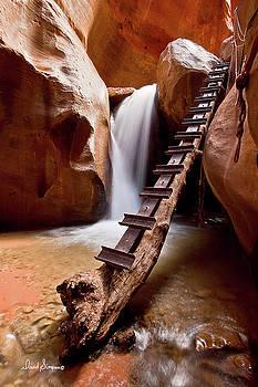 Kanarraville Falls II by David Simpson
