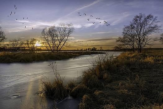 Kansas by Mark McDaniel