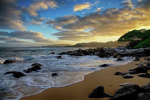 Kapaa Kauai Beach by Steven Michael
