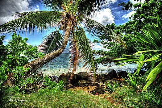 Kauai Coast by David Simpson