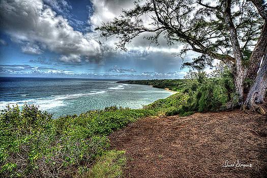 Kauai Coast II by David Simpson