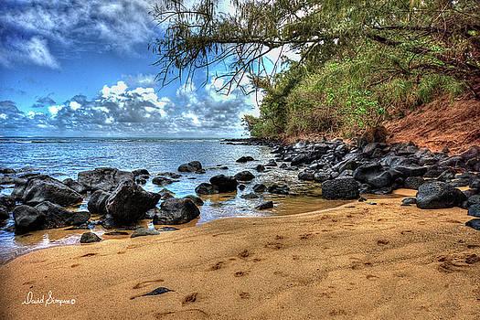 Kauai Coast III by David Simpson
