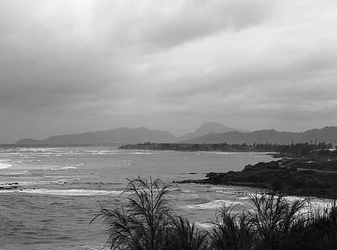 Mary Deal - Kauai Coconut Coast