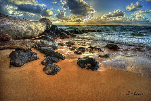 Kauai Morning Sun by David Simpson