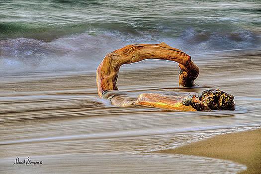 Kauai Surf by David Simpson