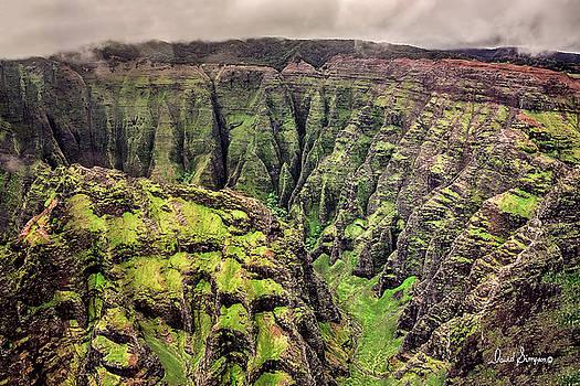 Kauai Valley II by David Simpson
