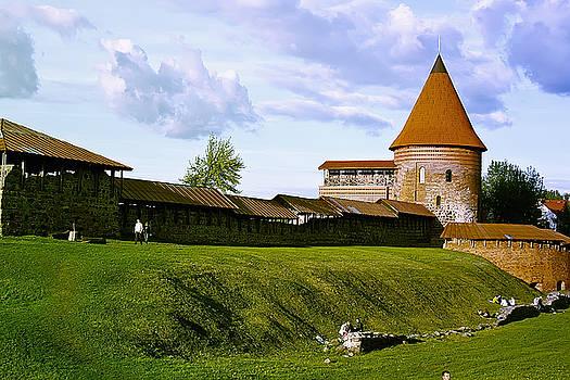 Kaunas castle by Arvydas Kantautas