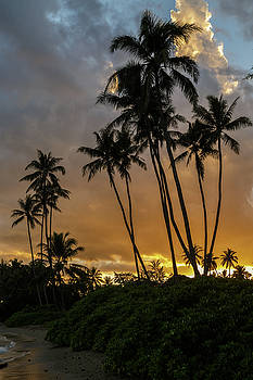 Kawaikui Sunset 4 by Leigh Anne Meeks