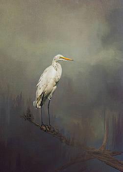 Keeping watch. by Lyn Darlington