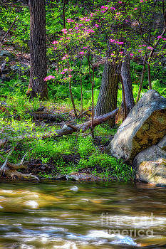 Ken Lockwood Gorge Spring Scenic by George Oze