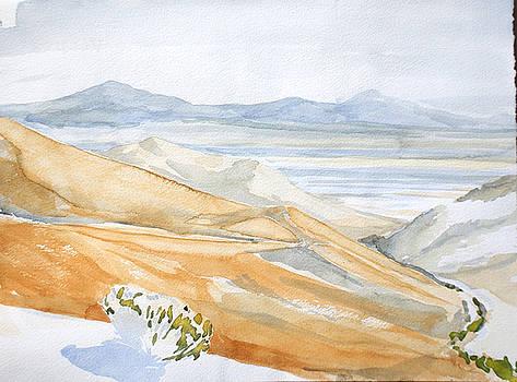 Kennedy Meadows The Desert Floor by Amy Bernays